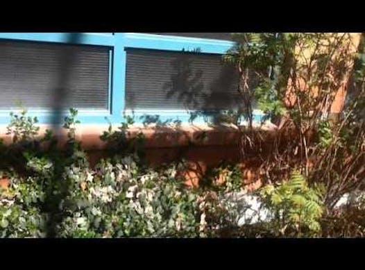 elementary school fundraising - Esker Lake Public School Happy Gardens Project