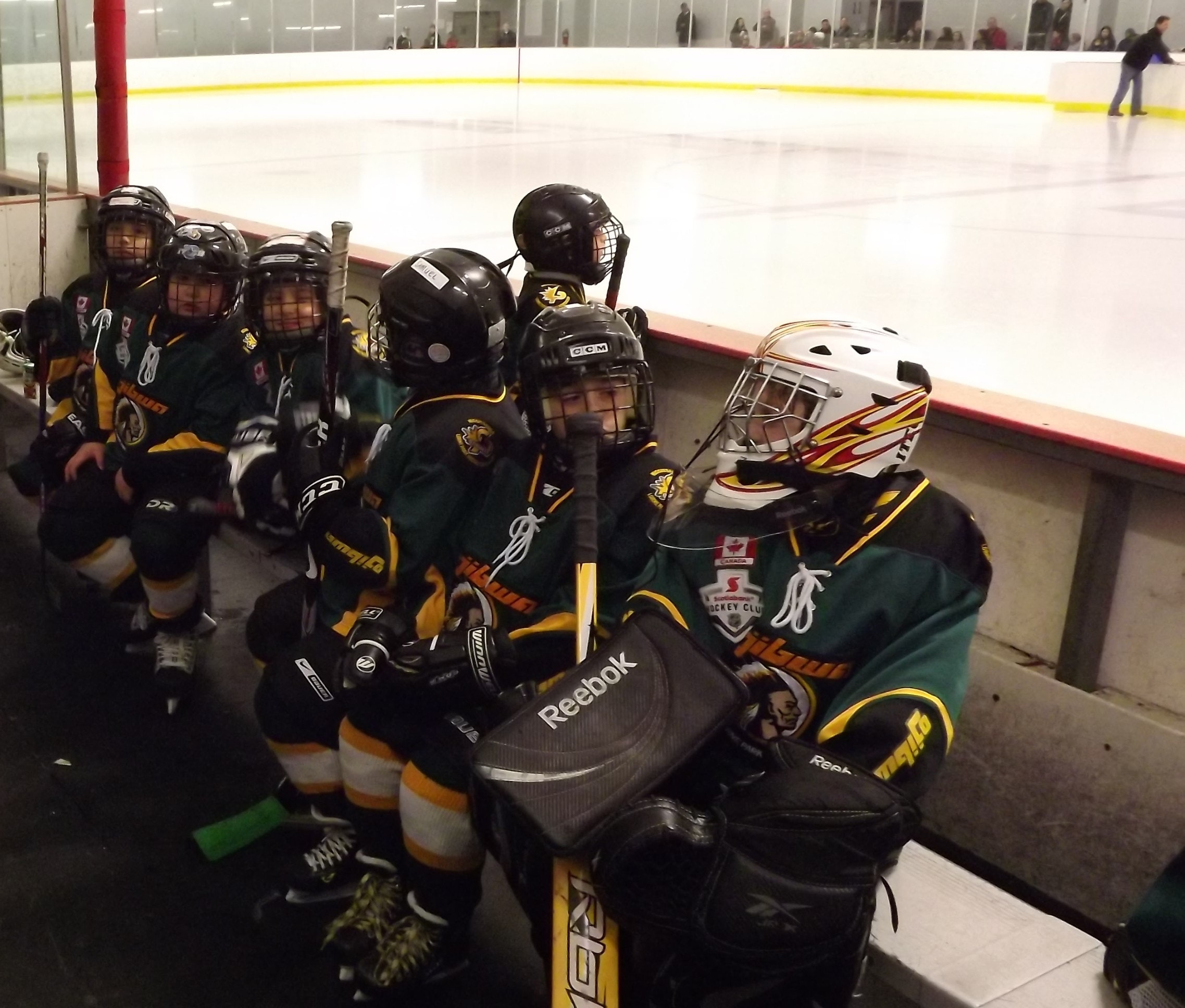 LPHA M.Atom Hockey - Please Support Our Team!