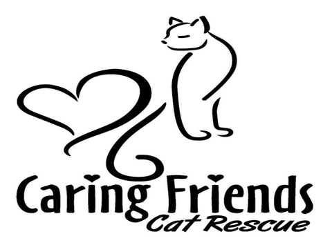 Caring Friends Cat Rescue Holiday Fundraiser