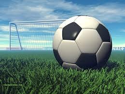 Cobra Girls Soccer U8