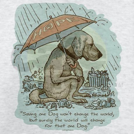 Fundraising for Ruff Start dogs
