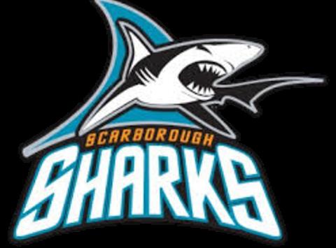 Scarborough Sharks Bantam B Girls Hockey Team