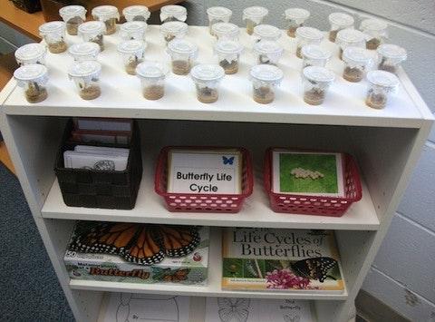 personal & family fundraising - Regina Montessori School Custom Shelving