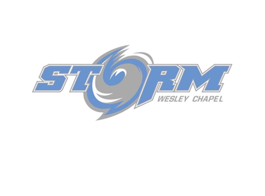 Wesley Chapel Storm 11U ( Maryland Trip)