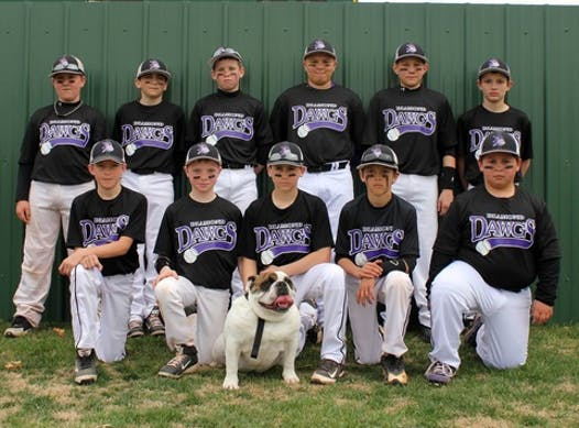 baseball fundraising - Diamond Dawgs 12U Baseball