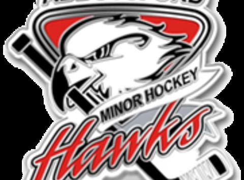 ice hockey fundraising - Abbotsford Blades Atom C6