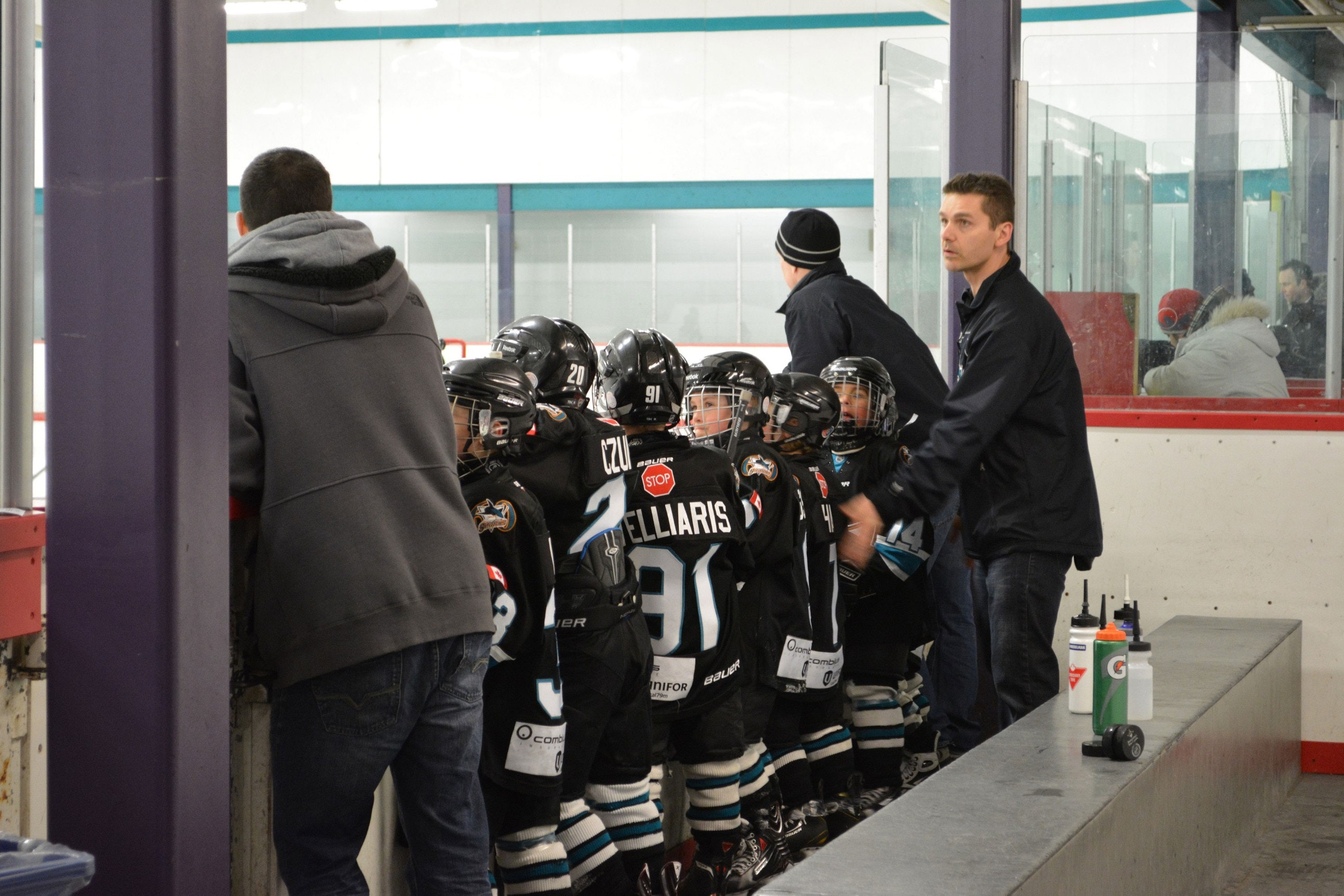 Humber Valley Sharks Novice