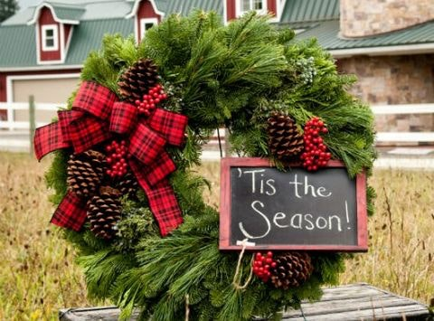 Second Hope Rescue Holiday Fundraising Event