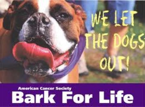 Barkin' Up a Tree -- Support Bark For Life of Thurston County