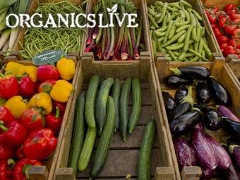 Organics Live Stiff Upper Lip