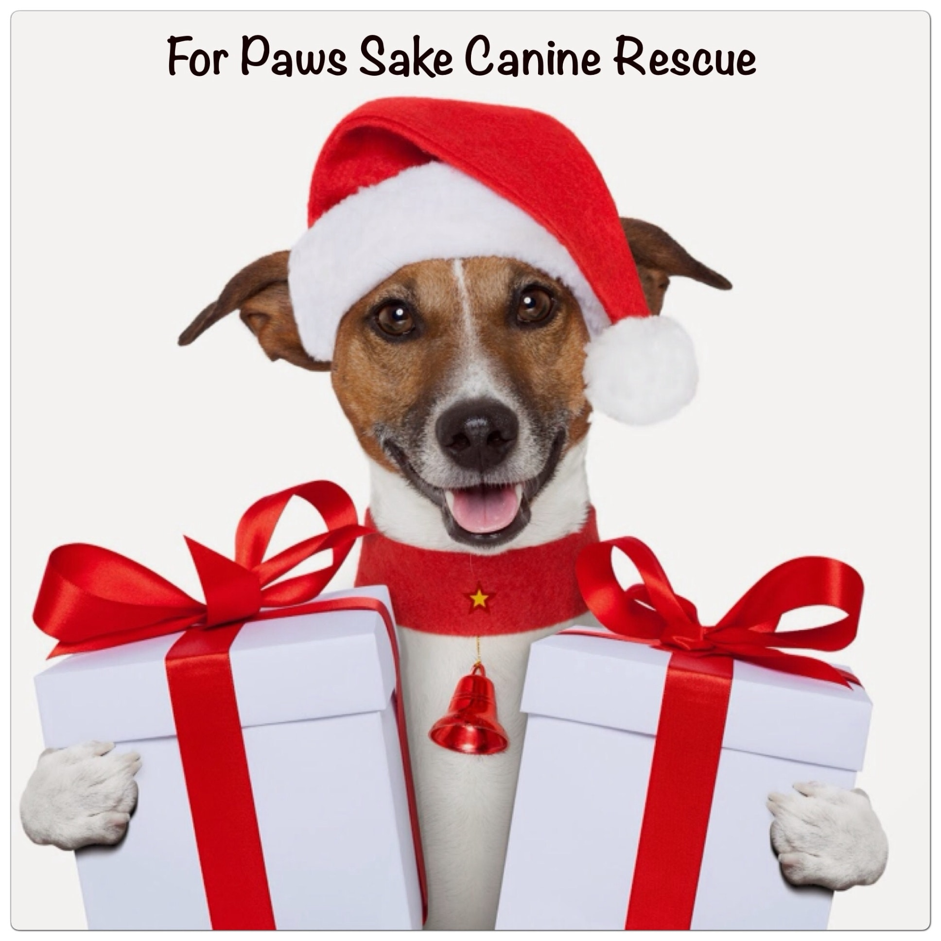 Support For Paws Sake Canine Rescue