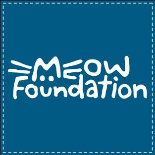 MEOW Foundation's Holiday Giving Campaign