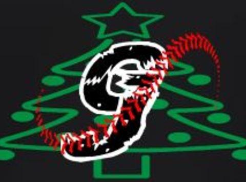 GJ Grizz Baseball
