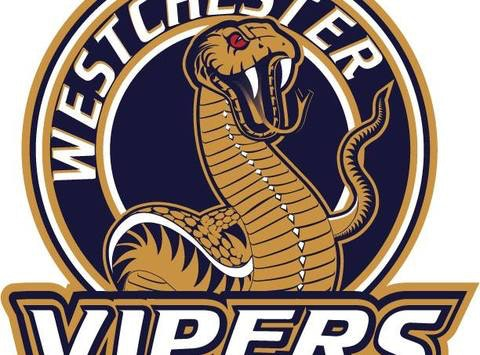Westchester Vipers Squirt 2005 Hockey