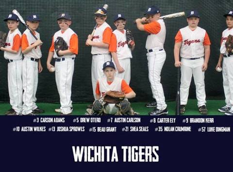 Wichita Tigers Baseball