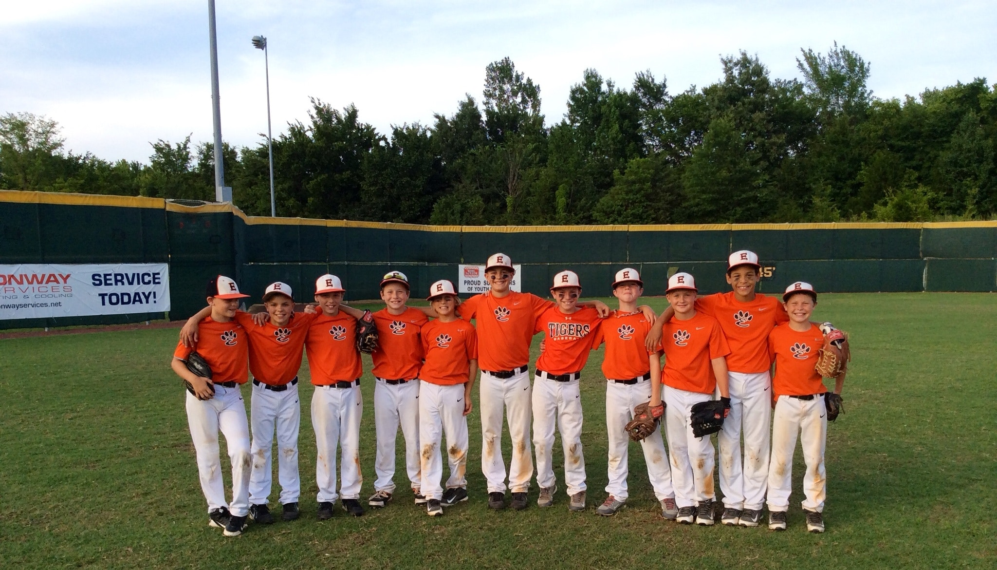 Tiger Baseball 12U