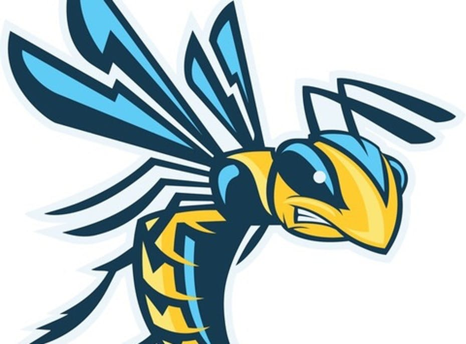 Arkansas Yellowjackets