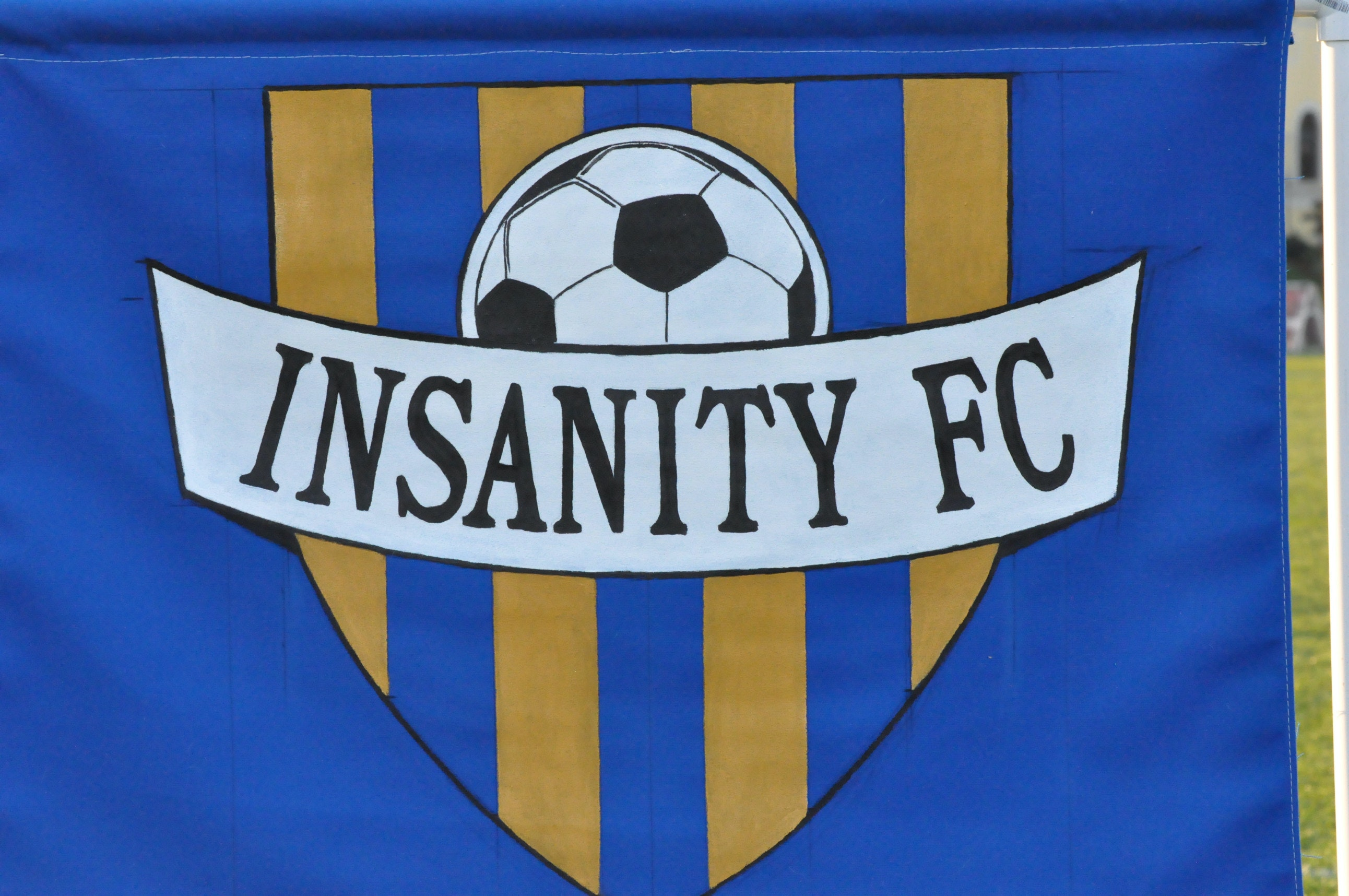 Insanity FC 07 Night Fury