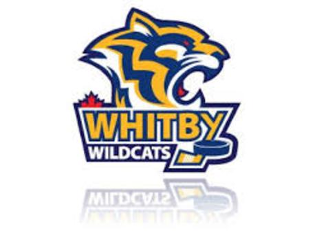 Pee Wee Wildcats