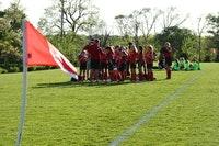 Lombard Firebirds U12 Red Stars Spring Tournament Fees