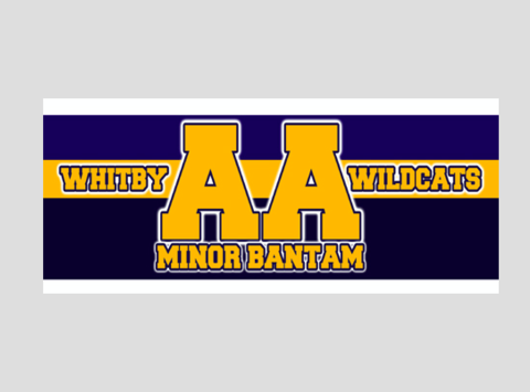 ice hockey fundraising - Whitby Wildcats - Minor Bantam AA