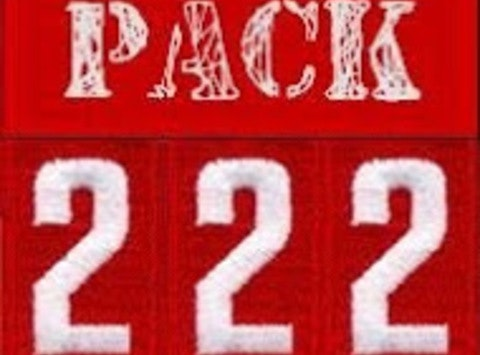 Cub Scout Pack 222
