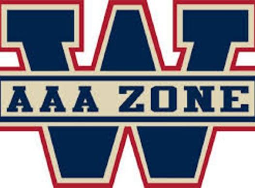 netball fundraising - Windsor AAA Minor Atom 06 Team