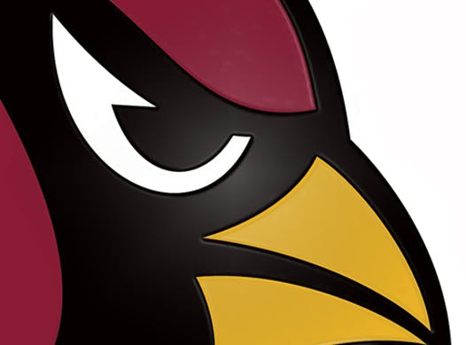 football fundraising - Cardinals Football and Cheer Fundraiser 2015