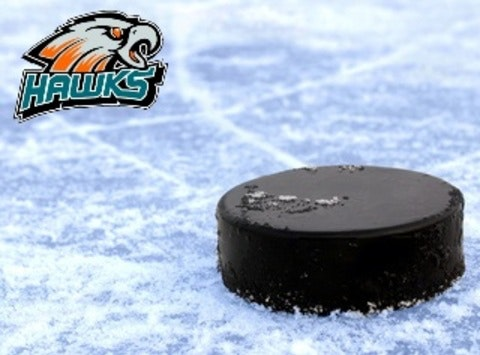 Bluewater Hawks PeeWee C Ice Expenses and Tournament Fee's