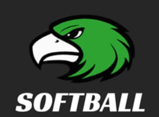 softball fundraising - New uniform