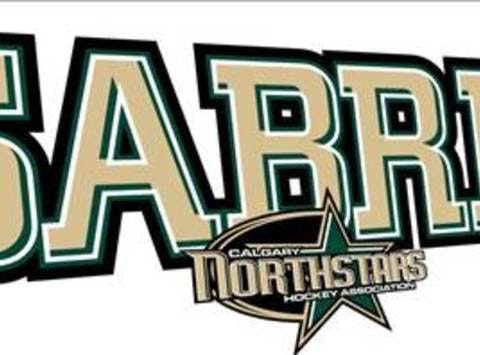 ice hockey fundraising - Bantam AAA Sabres Tournament Fees
