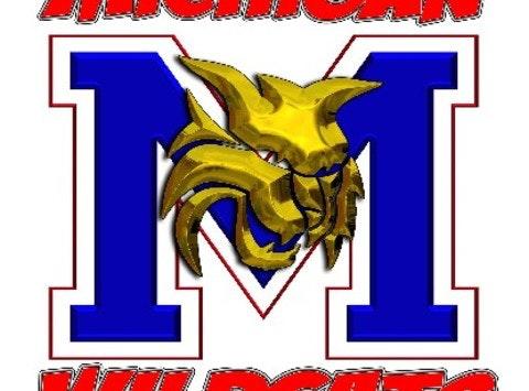 baseball fundraising - Michigan Wildcats