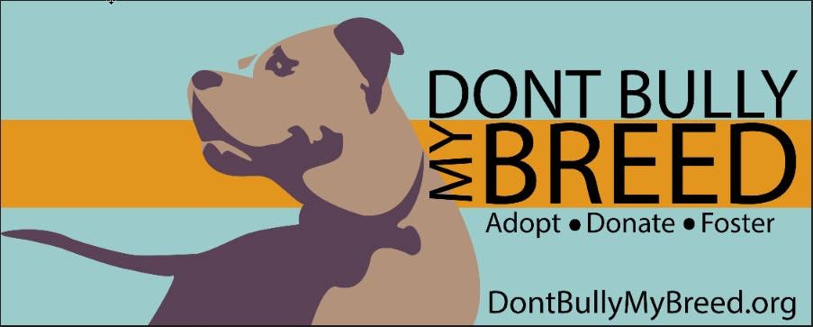 Dont Bully My Breed (DBMB) 2015 End-of-Year Fundraiser