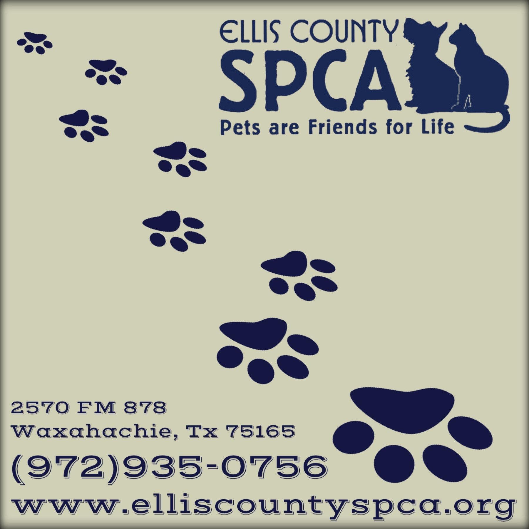 Furry Friend Fund / ECSPCA