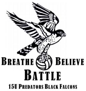 KW Predators 15U Black Falcons Volleyball