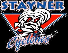 Stayner Minor Hockey Rink Divider Fundraiser