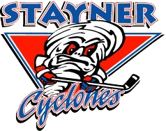Stayner Minor Hockey Rink Divider Fundraiser