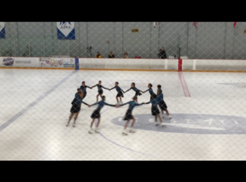 Fusion Synchronized Skating Team