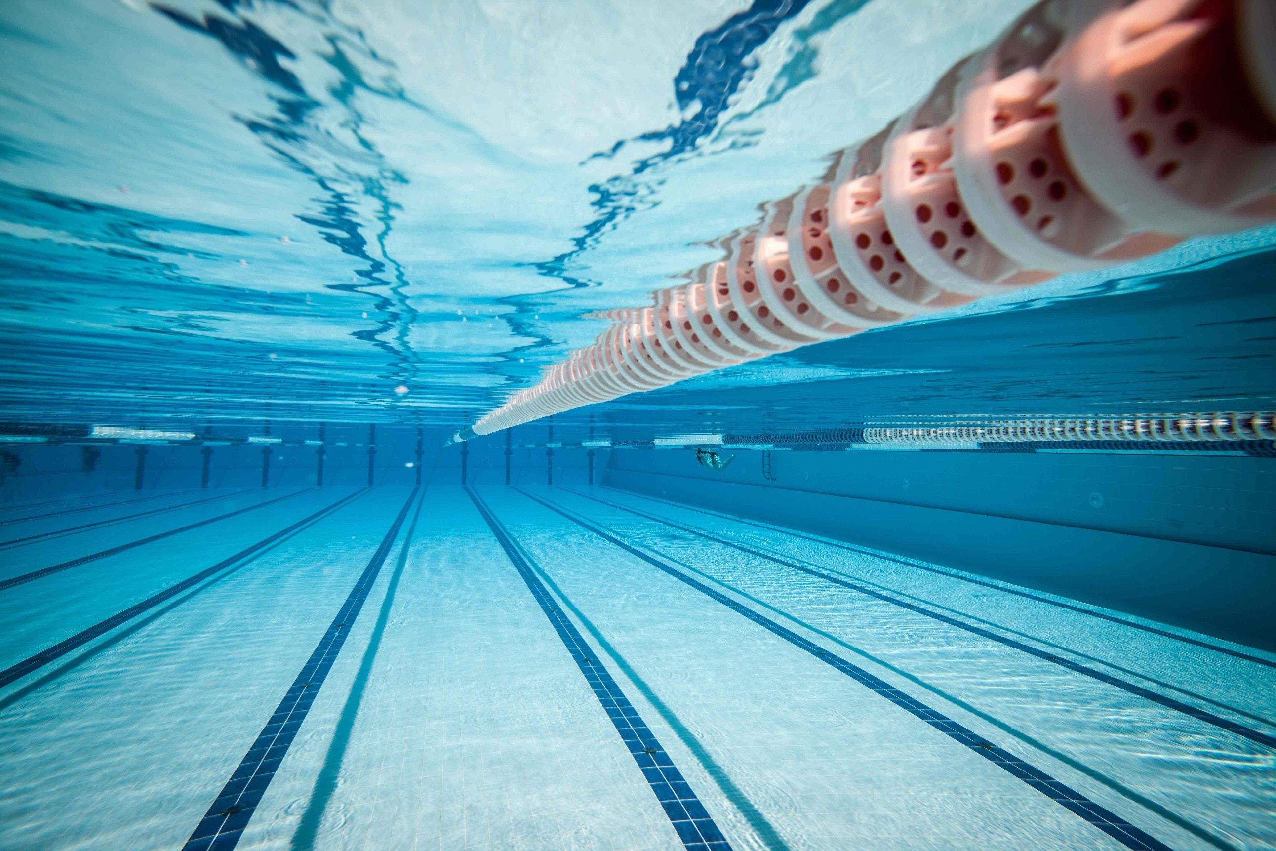 Billerica SeaWolves Swim Team