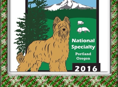 2016 BCA National Specialty - Briard Club of America