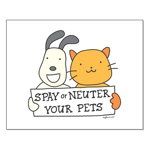 Indian Rivers Humane Society Spay/Neuter Services