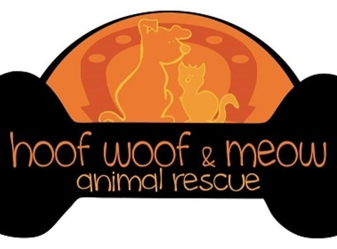 Hoof Woof Meow Holiday Fundraiser