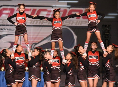 football fundraising - Oriole Park Falcons Youth Football and Cheer