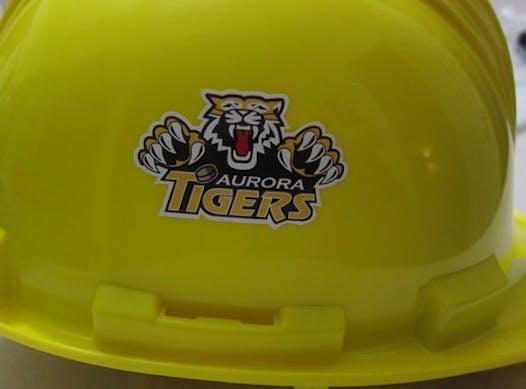 ice hockey fundraising - Aurora Tigers Novice AA Holiday Season Team Fundraiser