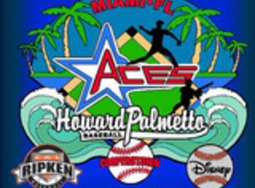 baseball fundraising - Howard Palmetto Aces Ripken Experience