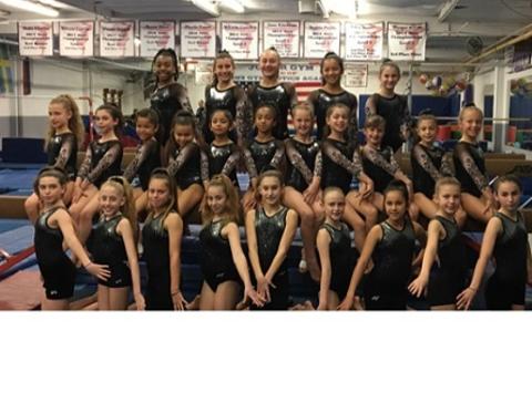 gymnastics fundraising - Lyons Gymnastics Academy 2019 Fundraiser