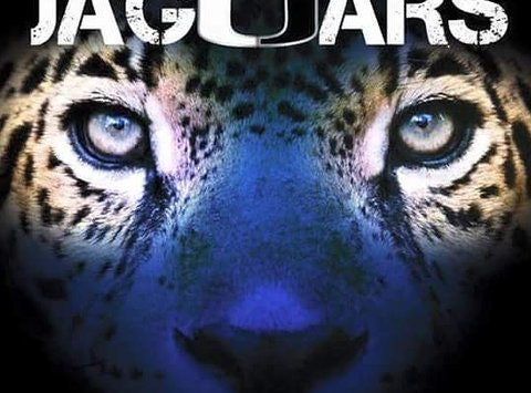 Superb Central Dekalb Jaguars Blue Team