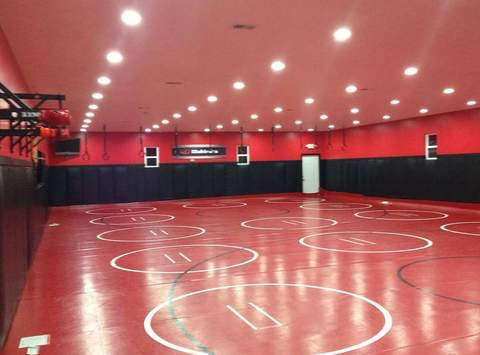TEAM MAHINDRA WRESTLING