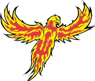 Duluth Phoenix Bantam Minor