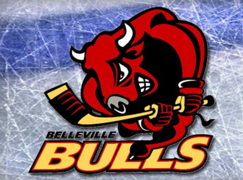 Belleville Novice AA Bulls